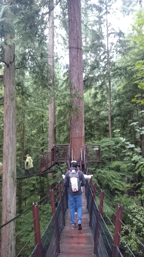 Steve, George, and Claudia explore Capilano suspension bridge park, Vancouver.