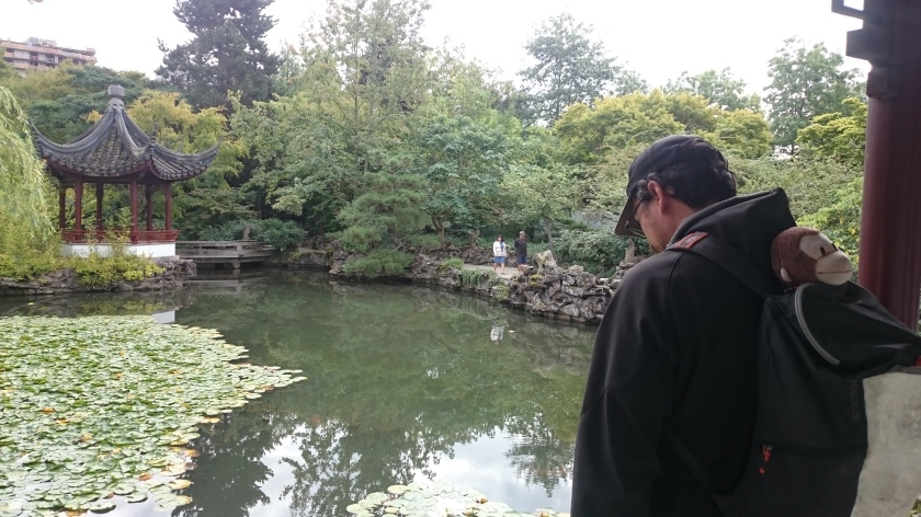 Steve spying Coy fish in the Dr. Sun Yat-Set Classical Chinese Garden.
