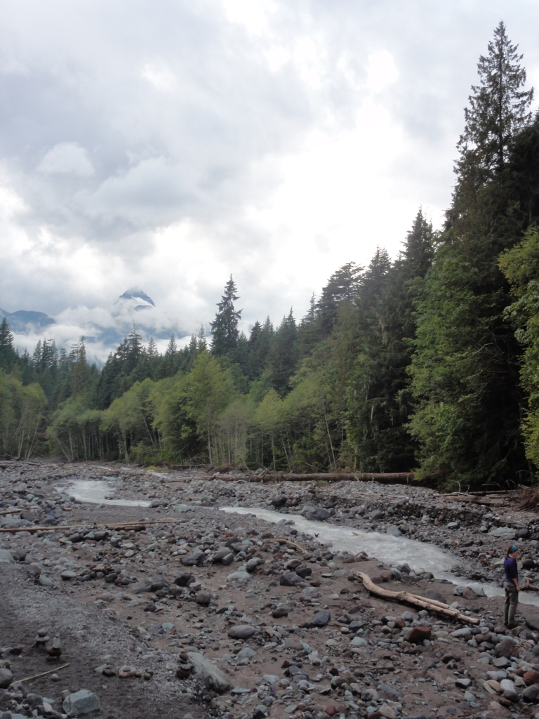Rainy day exploration at Alice Lake Provincial Park.