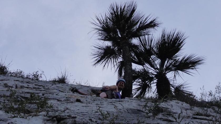 Mid pitch palm tree hug.
