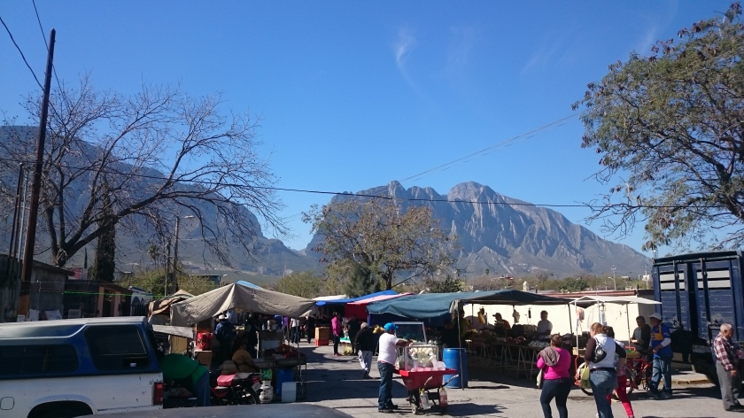 The market of Hidalgo, the best way to get fresh and inexpensive produce.