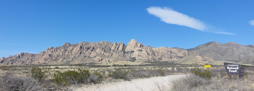 The beautiful Coronado National Forest. Sheepshead is the largest formation near the center of this picture.