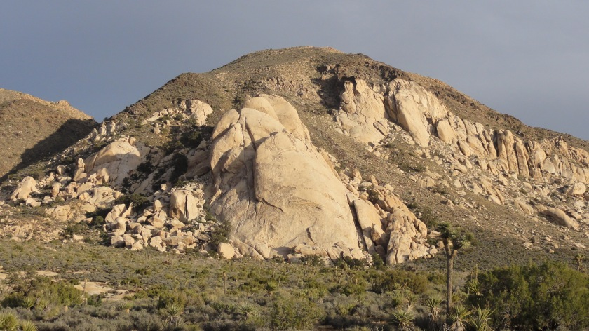 Looking back at Saddle Rock. We climbed Orange Flake which follows the leftmost of the large twin cracks on the left side of the dome. At 400 ft tall this is one of the longest routes in Joshua Tree.